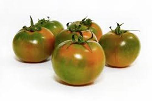 Pomodori camone sardegna