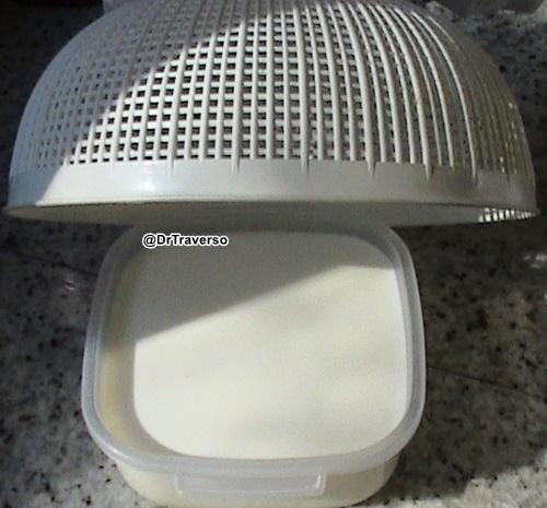 Granuli di Kefir nel latte in fermentazione