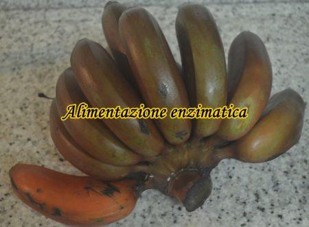 Alimentazione enzimatica personalizzata 10 menù
